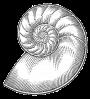 Nautilus-thmb